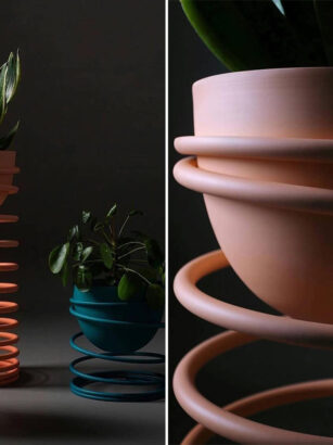 A group of pots with plants in them Description automatically generated with low confidence